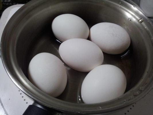 ゆで卵 のコピー