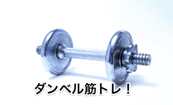 ダンベル筋トレ! 自宅でトレーニングする際に1セット持っておくと非常に便利なダンベルにつ...