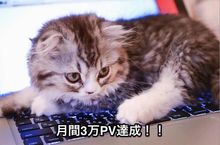 月間3万PV達成!!1
