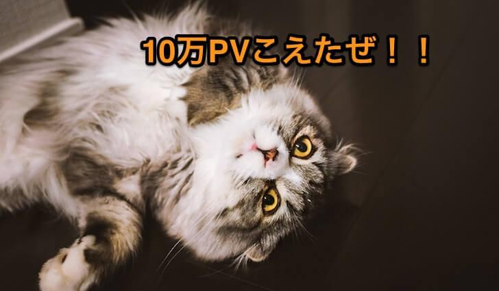 猫10万PV