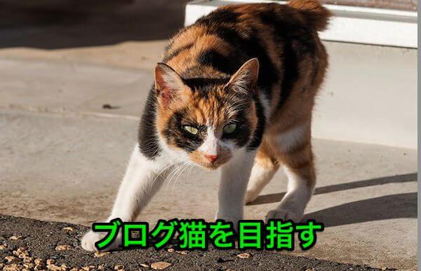 JS745_keikaisuruneko500_jpg