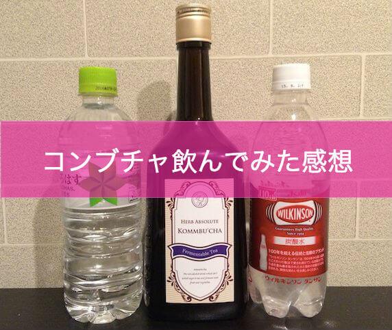 コンブチャ水 2