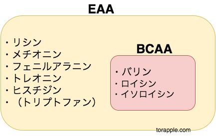 EAAサプリBCAA違い