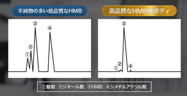 【HMB極(きわみ)ボディ】亀田兄弟