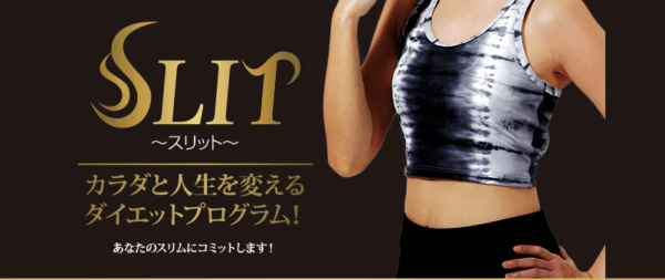 http://www.sd-fit.jp/slit/