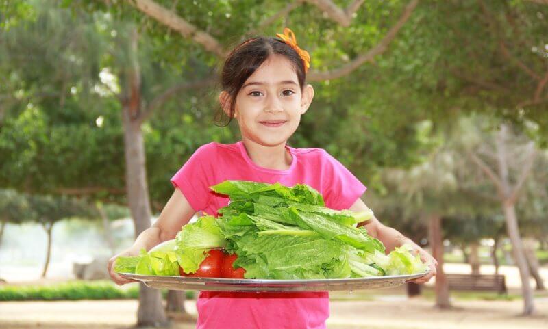 野菜は食べる必要があるか?